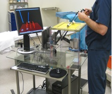 Figure 1. Simulator Used in the Experiment